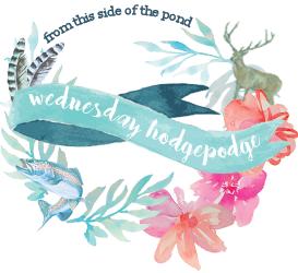 Wednesday Hodgepodge – Perfectionism?