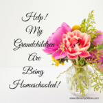 Help!  My Grandchildren Are Being Homeschooled!